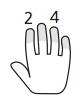 dedos 2,4 mano dcha